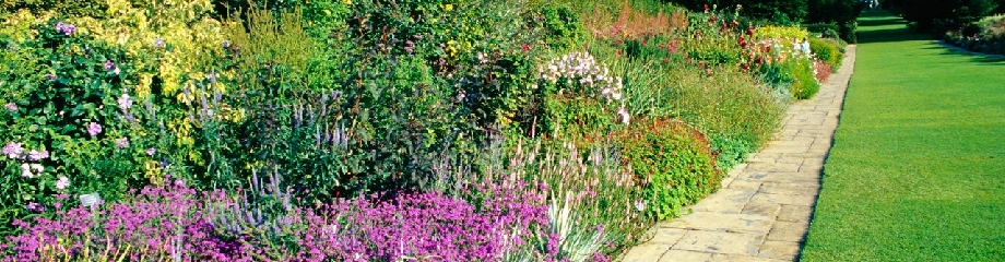 Gardening in Buckingham
